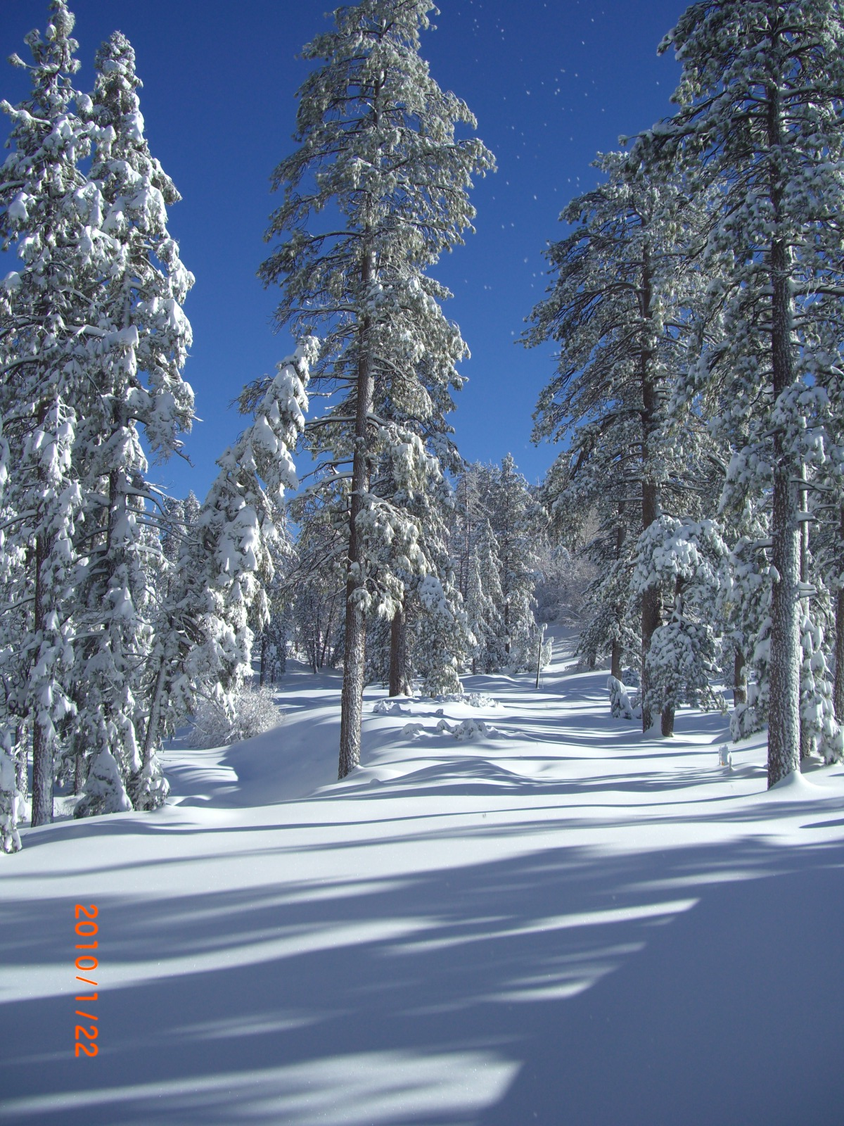 Grooming The Cross Country Ski Trails