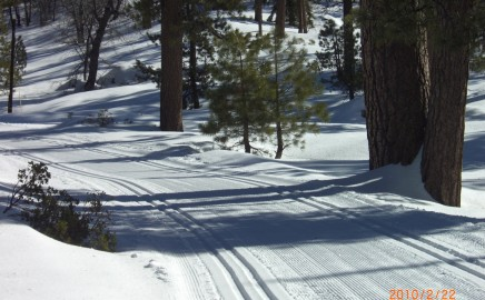Groomed Trail System – All Levels