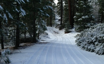 Welcome to Rim Nordic Ski Area
